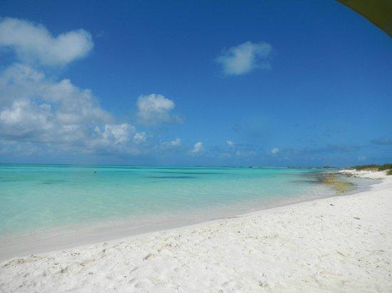 Isla de Carenero - Los Roques: praia maravilhosa