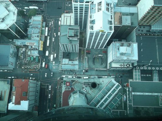 Sky Tower: Looking straight down from 631 feet high.