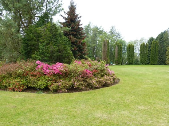 Kirroughtree House Hotel : The gardens
