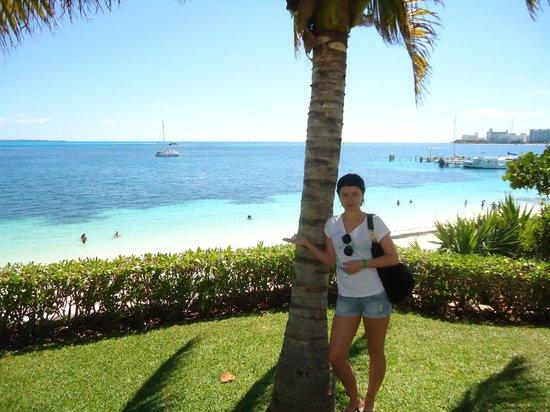 Maya Caribe Hotel: территория