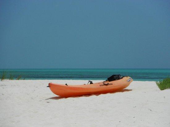 Shannas Cove Resort: One of the kayaks