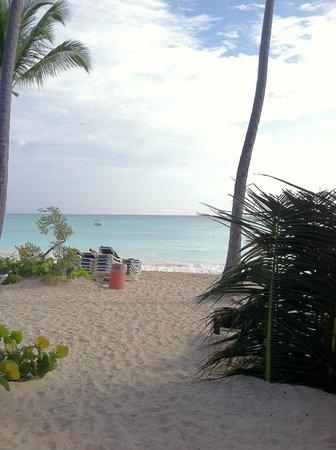 Grand Palladium Punta Cana Resort & Spa : Bavaro Beach
