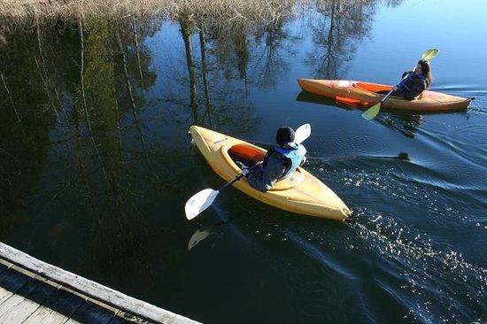 Green Acres Lakeside Resort Salt Spring Island : Kayaking at Green Acres Resort, Salt Spring Island