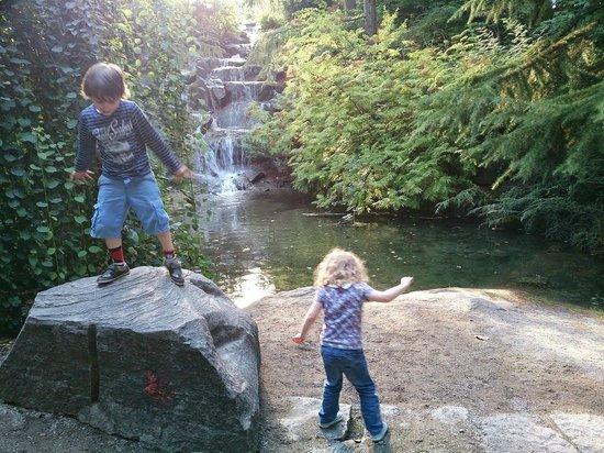 VanDusen Botanical Garden : Waterfall