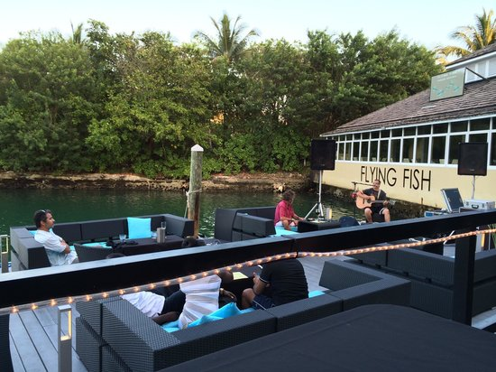 Sushi on casual sunday picture of flying fish freeport for Where do flying fish live