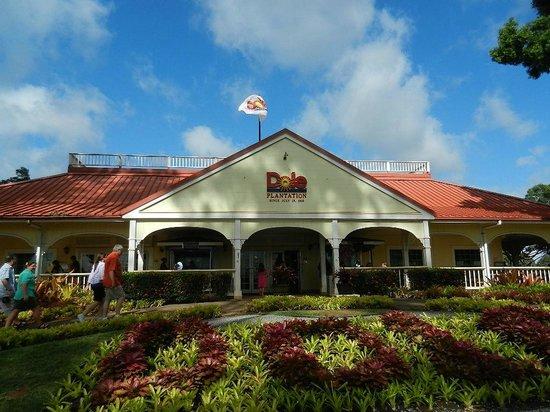 Roberts Hawaii: Last Stop-Dole Plantation
