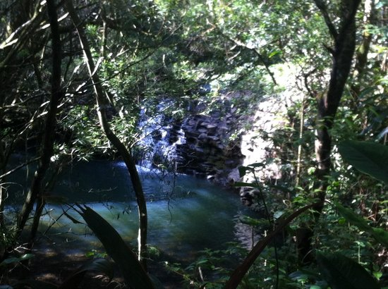 Twin Falls: The first water fall on this 15 min hike! Taken from above but u can walk down to this area and