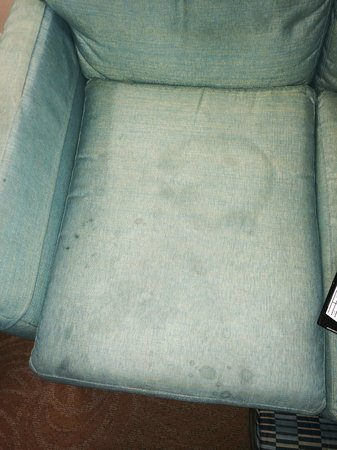 Marriott's Ocean Pointe : Family room sofa (disgusting!)