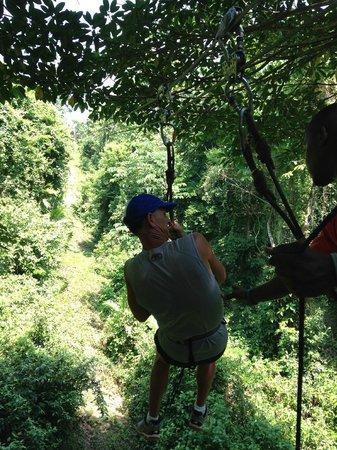 Jungle Top Zipline Adventure: Fun