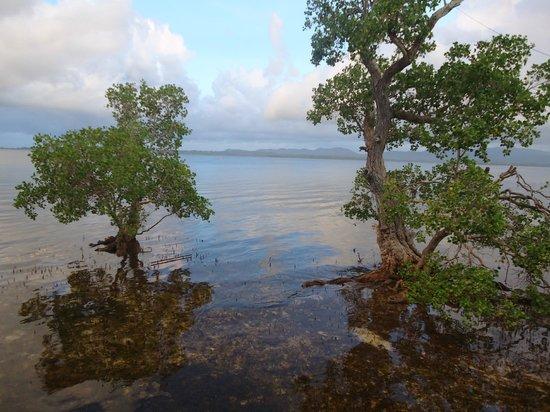 Badjao Seafront: view