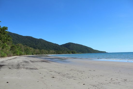 Daintree National Park: The beach