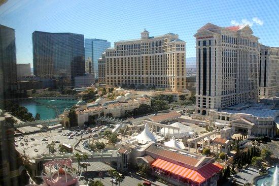 Flamingo Las Vegas Hotel & Casino: View