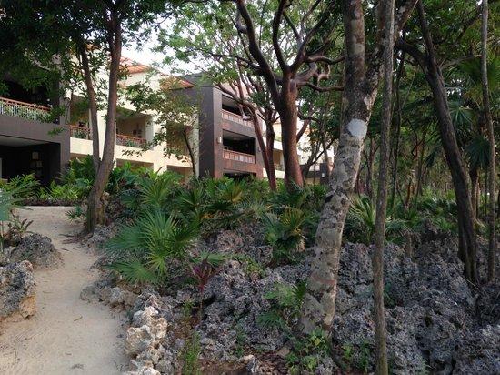 Grand Roatan Caribbean Resort: Outside our condo