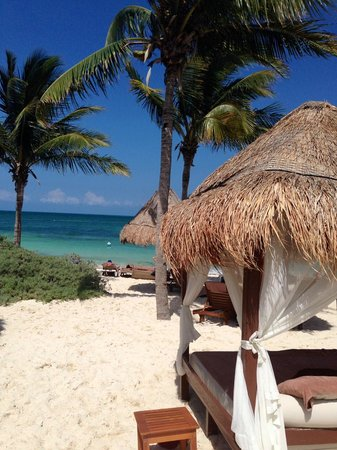 Excellence Playa Mujeres: View from beach chair