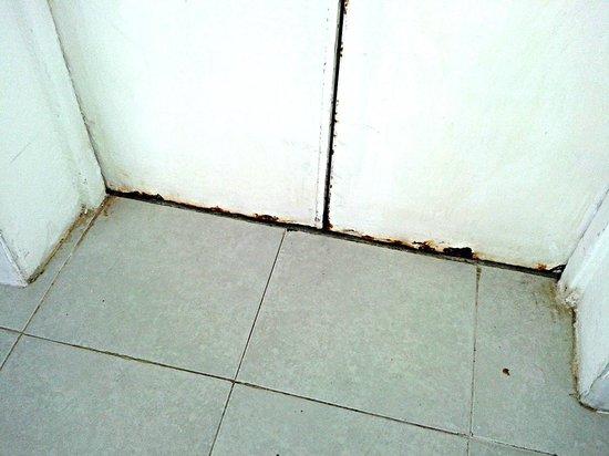 Bel Air Collection Resort & Spa Cancun: la puerta oxidada del elevador