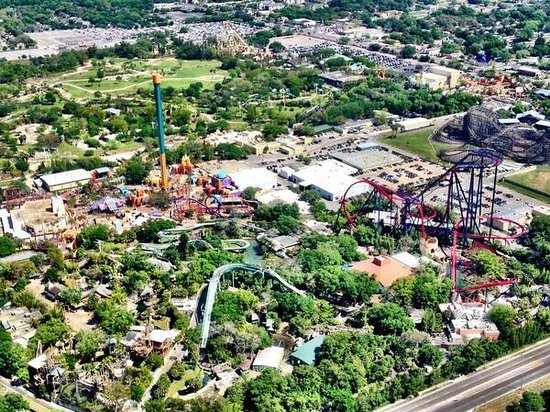 The 10 Closest Hotels To Busch Gardens Tampa TripAdvisor Book ...