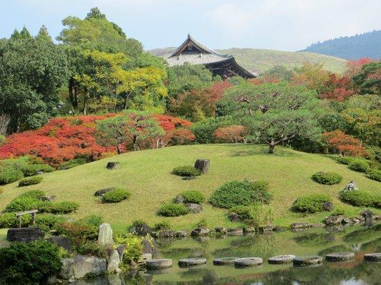 Image Gallery isuien garden