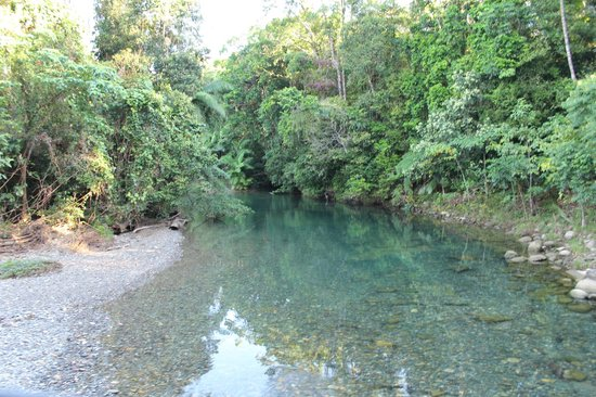Daintree Rainforest: Crystal clear waters