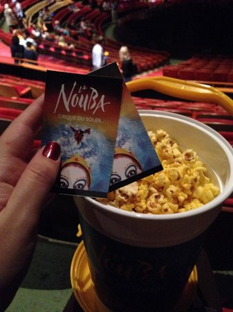 La Nouba - Cirque du Soleil: La Nouba