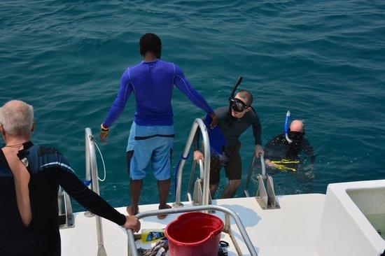 Belize Underwater: Entry/exit platform