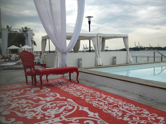Mondrian South Beach Hotel: pool