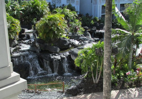 Fairmont Orchid, Hawaii : View from 3rd floor