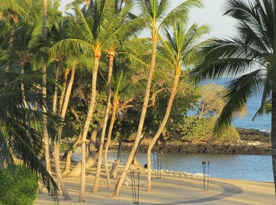 Fairmont Orchid, Hawaii : The Beach