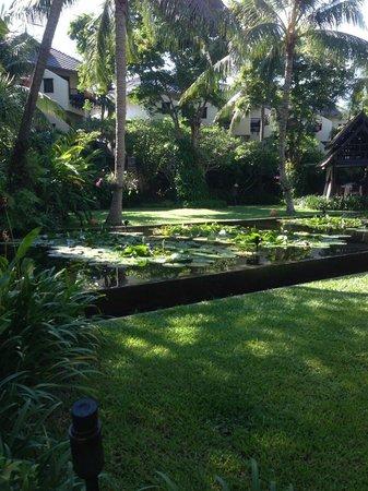 Anantara Bophut Koh Samui Resort : Grounds