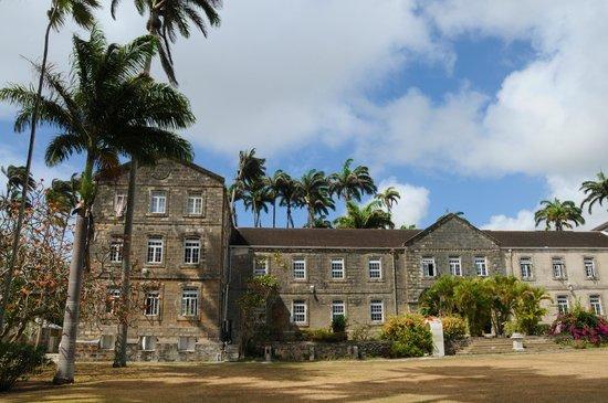 Christ Church Barbados  City pictures : Novità! Ti rivolgi a noi per le recensioni: ora puoi prenotare il tuo ...
