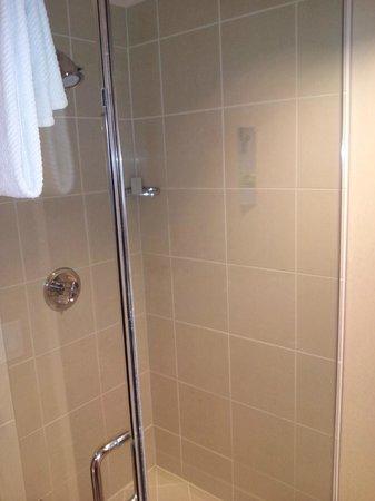 Renaissance Las Vegas Hotel : Shower