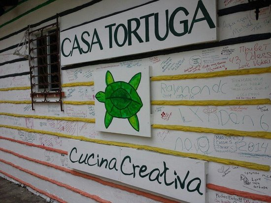 Casa Tortuga: Fachada