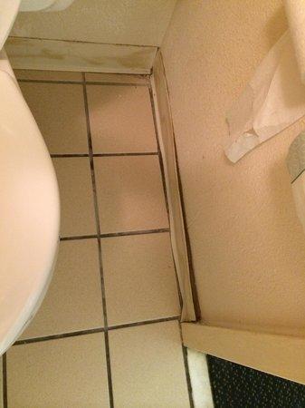 Mountain View Inn: Nasty bathroom