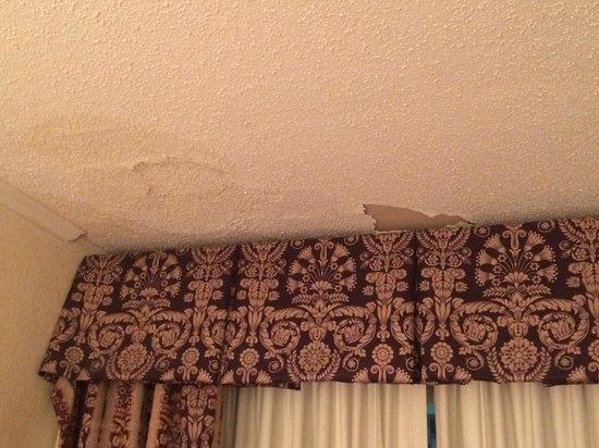 Mountain View Inn : Water damage