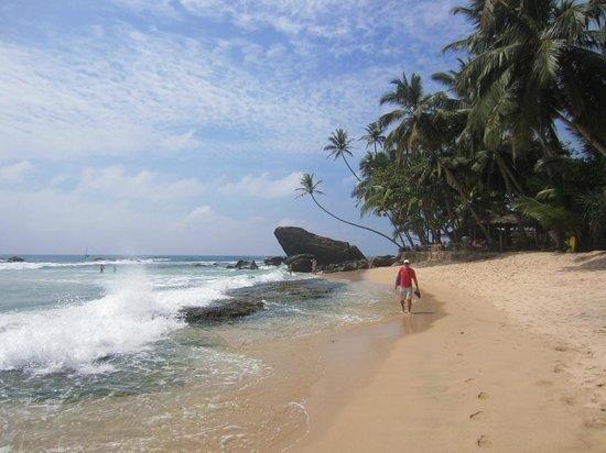 Beach Grove Villas : local beach (not Unawatuna)