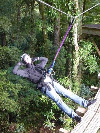 Rotorua Canopy Tours: Kicking back in safety