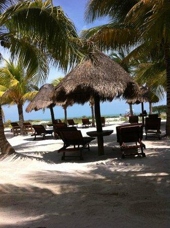 Villas HM Paraiso del Mar: EN LOS CAMASTROS