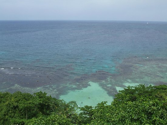 Rainforest Adventures Jamaica: Ovean view from the top.