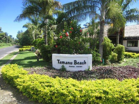 タマヌ ビーチ Image