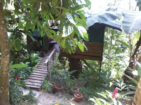 Ka'Kau Jungle Cabinas: Treehouse