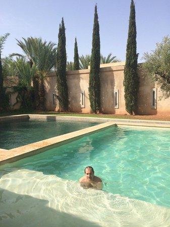 Palais Namaskar: La piscine privée de notre Pool Villa
