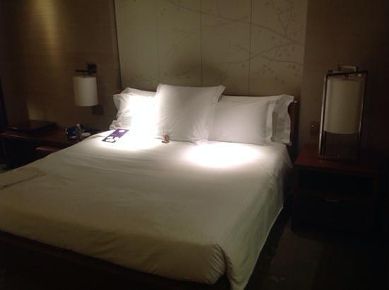 Conrad Tokyo: Firm mattress ... spot the bear!