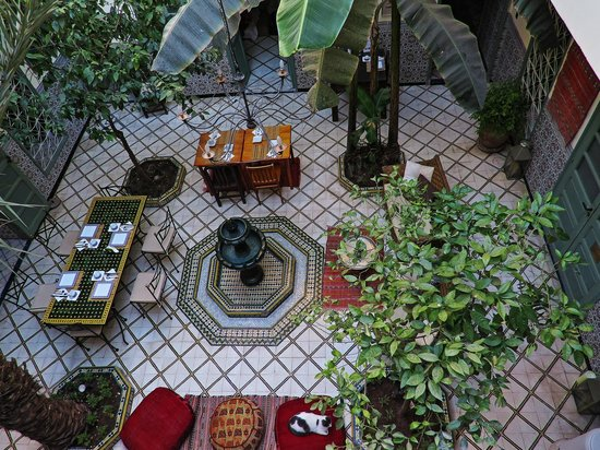 Dar Limoun Amara : el patio