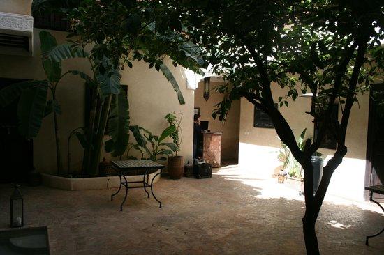 Riad l'Oiseau du Paradis: Cour interieure
