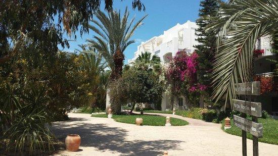 Vincci Resort Djerba : Jardins de l hotel