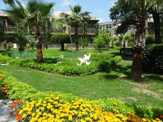 Paloma Oceana Resort: beautiful garden