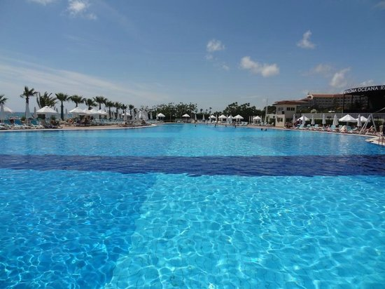 Paloma Oceana Resort : pool near the beach