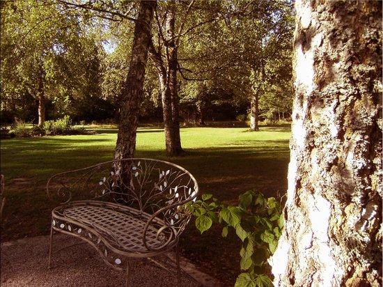 Orée du Bois en Sologne : Instant de repos à l'ombre et au calme...