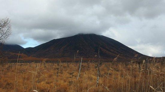 Senjogahara Field: november