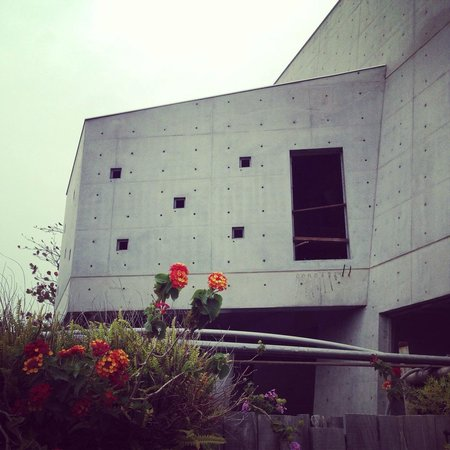 Mao Wu Hostel : 毛屋二期