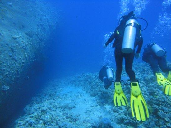 Ahlan Aqaba Scuba Diving Centre: Diving around sunken ship